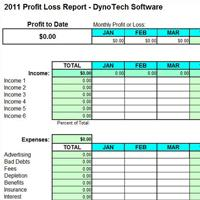 Profit & Loss Report screen shot